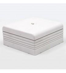 Dlplus bte deriv  75X75 blanc